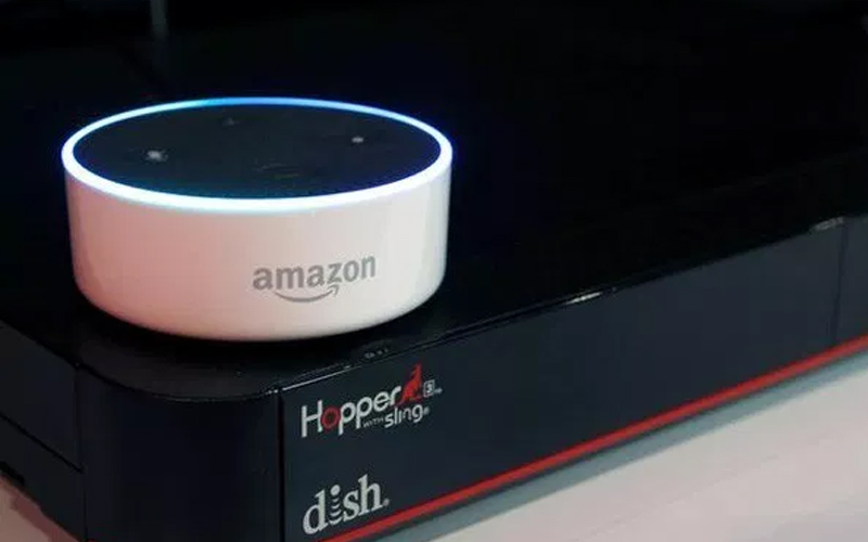 Indian consumers say big hello to voice-based devices