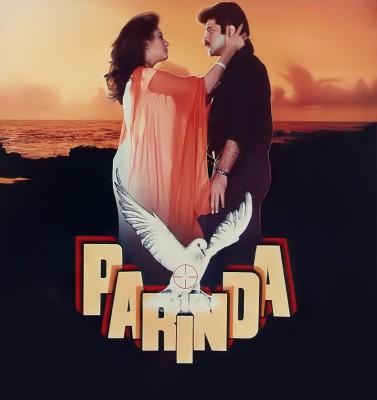Madhuri Dixit looks back at 'Parinda' memories